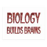 La biología construye cerebros tarjetas postales