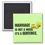 La boda no es un imán de la palabra