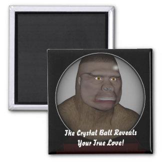 La bola de cristal imán cuadrado