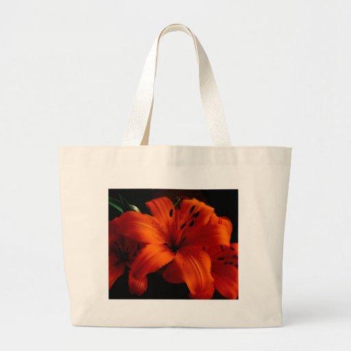 La bolsa de asas anaranjada de Lilly