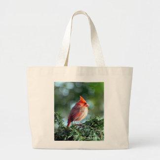 La bolsa de asas cardinal