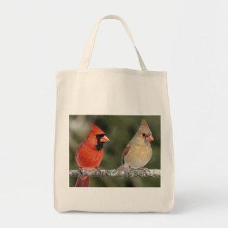 La bolsa de asas cardinal septentrional de la