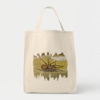 La bolsa de asas de la araña de Amaurobiidae