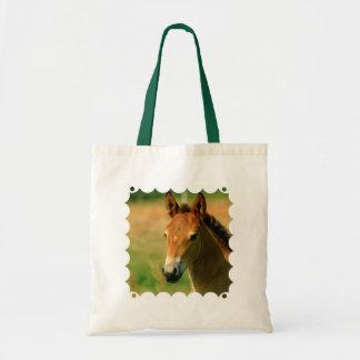 La bolsa de asas de la potra