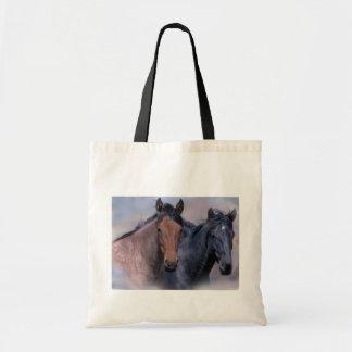 La bolsa de asas de los caballos salvajes
