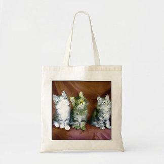 La bolsa de asas de los gatitos