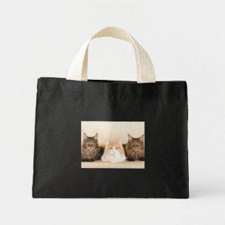 La bolsa de asas de los gatos de coon de Maine