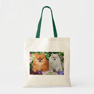 La bolsa de asas de Pomeranians