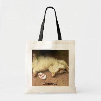 La bolsa de asas de Seamus