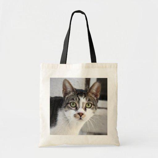 La bolsa de asas del gato