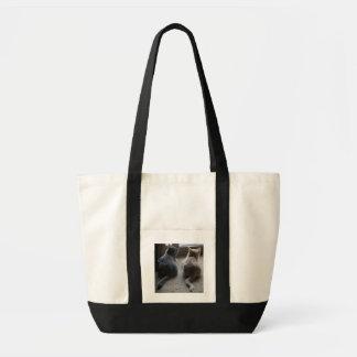 La bolsa de asas del jaspe y del gatito de Kaylee