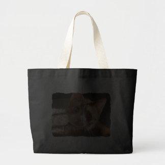 La bolsa de asas del jumbo de la foto del gato del