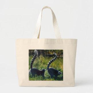 La bolsa de asas del Lemur