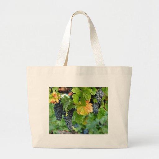 La bolsa de asas del país vinícola de los viñedos