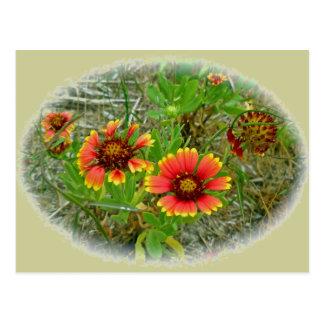 La bolsa de asas del Wildflower del Gaillardia (fl Postales
