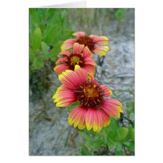 La bolsa de asas del Wildflower del Gaillardia (fl Tarjeton