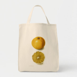 La bolsa de asas fresca del pomelo del vintage