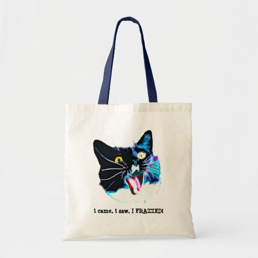 La bolsa de asas loca del gato