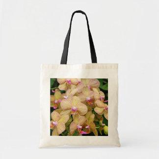 La bolsa de asas - orquídea de polilla