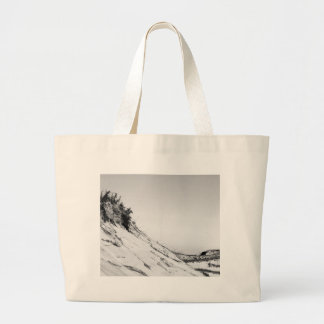 La bolsa de asas serena de la duna de la playa