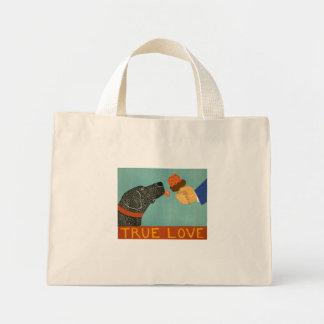 La bolsa de asas verdadera del amor