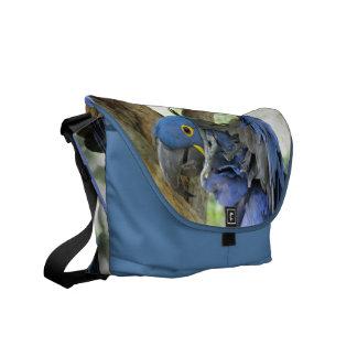La bolsa de mensajero azul del Macaw Bolsa Messenger