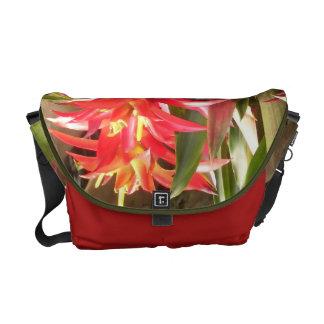 La bolsa de mensajero - Bromeliads Bolsas Messenger