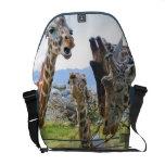 La bolsa de mensajero de cotilleo del carrito de l bolsas de mensajería