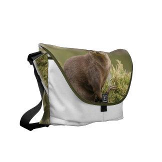 La bolsa de mensajero de la nutria bolsas de mensajería