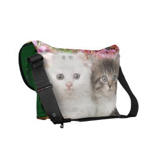 La bolsa de mensajero de los gatitos bolsa de mensajeria