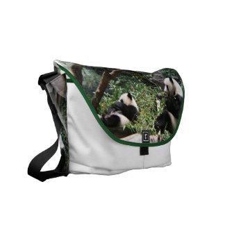 La bolsa de mensajero de los osos de panda bolsa messenger
