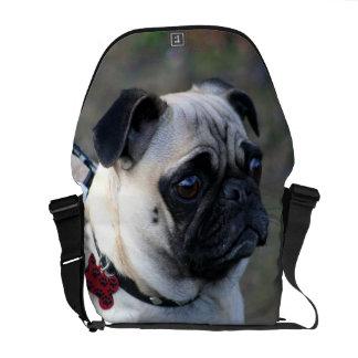 La bolsa de mensajero del carrito del perro del ba bolsa de mensajeria