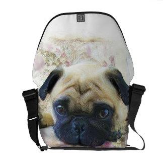 La bolsa de mensajero del carrito del perro del ba bolsas de mensajeria