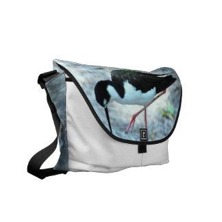 La bolsa de mensajero del chorlito bolsa de mensajeria