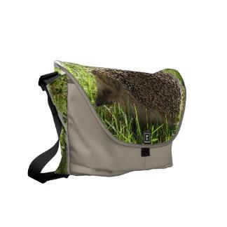 La bolsa de mensajero del erizo bolsa de mensajeria