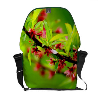 La bolsa de mensajero del melocotón de la mandarin bolsa messenger