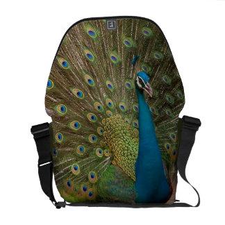 la bolsa de mensajero del pavo real del fractal bolsa de mensajeria
