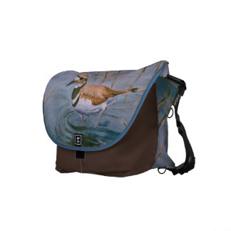 La bolsa de mensajero del tipo de tero norteameric bolsas de mensajeria