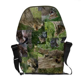 La bolsa de mensajero escocesa de los gatos montes bolsas de mensajería