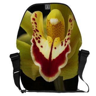 La bolsa de mensajero grande de la orquídea verde bolsas messenger
