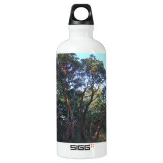 La botella de agua de aluminio del Arbutus, BPA