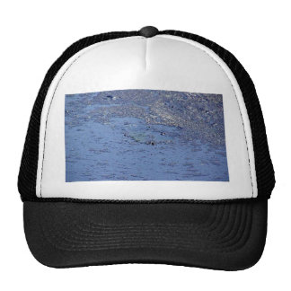 La Brea Tarpits Ponds Trucker Hat