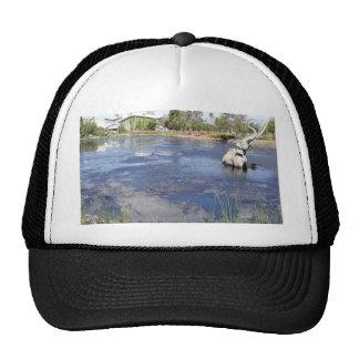 La Brea Tarpits Ponds Museums Hat