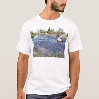 La Brea Tarpits Ponds Museums T-Shirt