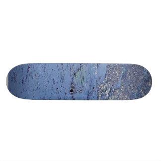La Brea Tarpits Ponds Skate Board