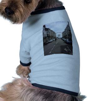 La Brighton rueda adentro Brighton, Reino Unido Camiseta Con Mangas Para Perro