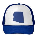 La broche del azul de Arizona detrás enreda el gor Gorros