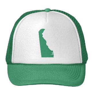 La broche verde del estado de Delaware detrás Gorros