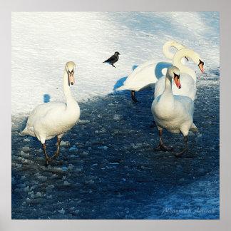 La búsqueda imposible - cisnes en el lago winter posters