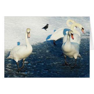 La búsqueda imposible - cisnes en el lago winter felicitación